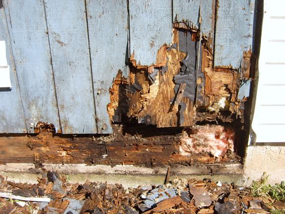 how to fix water damaged paneling